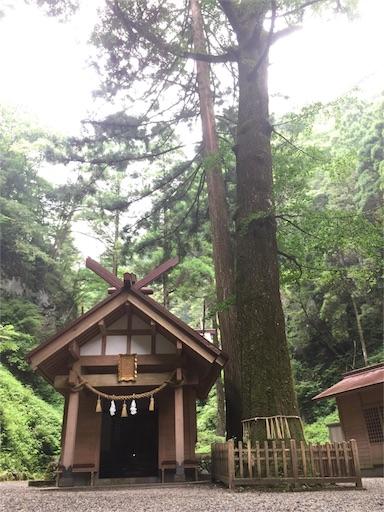 f:id:hoshi-no-shizuku-rokko:20170726102746j:image