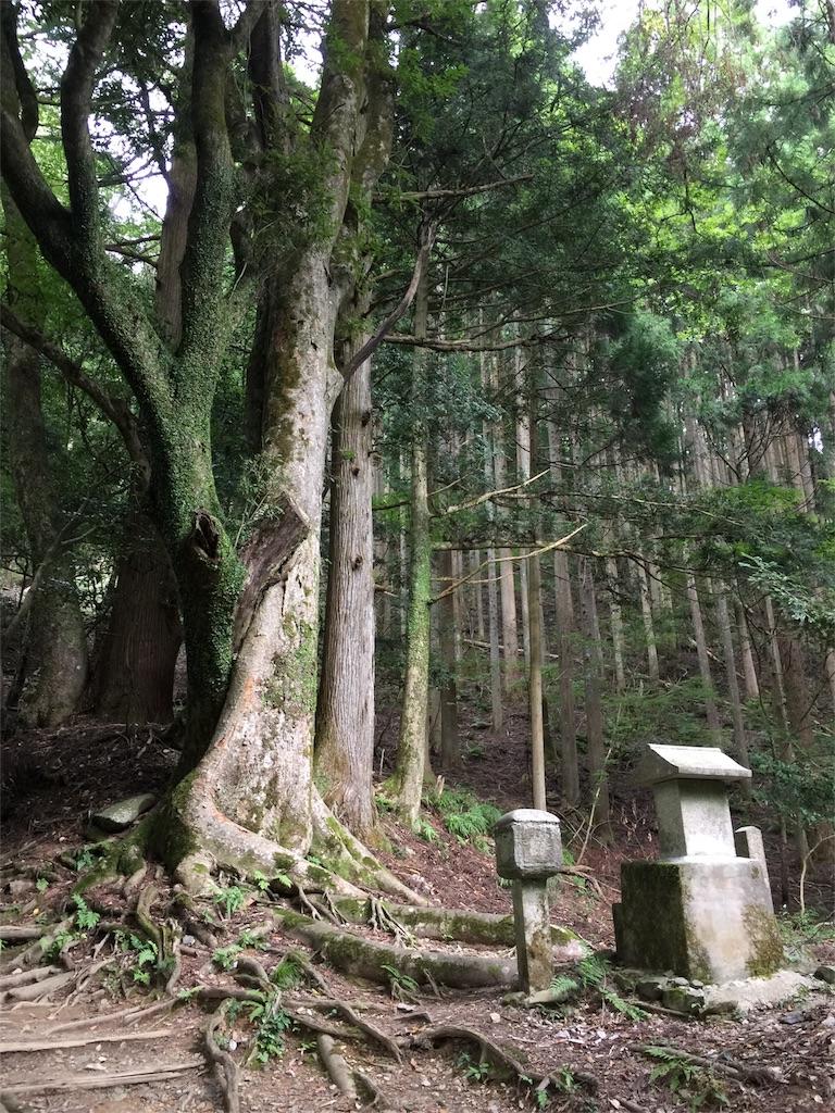 f:id:hoshi-no-shizuku-rokko:20180123150209j:image