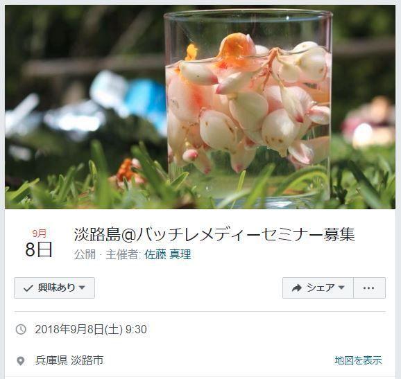 f:id:hoshi-no-shizuku-rokko:20180825205704j:plain