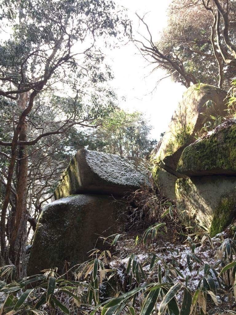 f:id:hoshi-no-shizuku-rokko:20181112101345j:image