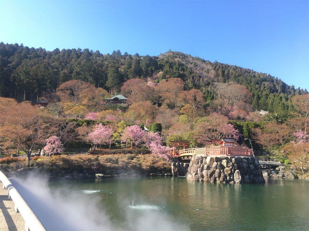 f:id:hoshi-no-shizuku-rokko:20190416000857j:image
