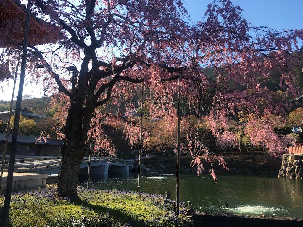 f:id:hoshi-no-shizuku-rokko:20190416001155j:image