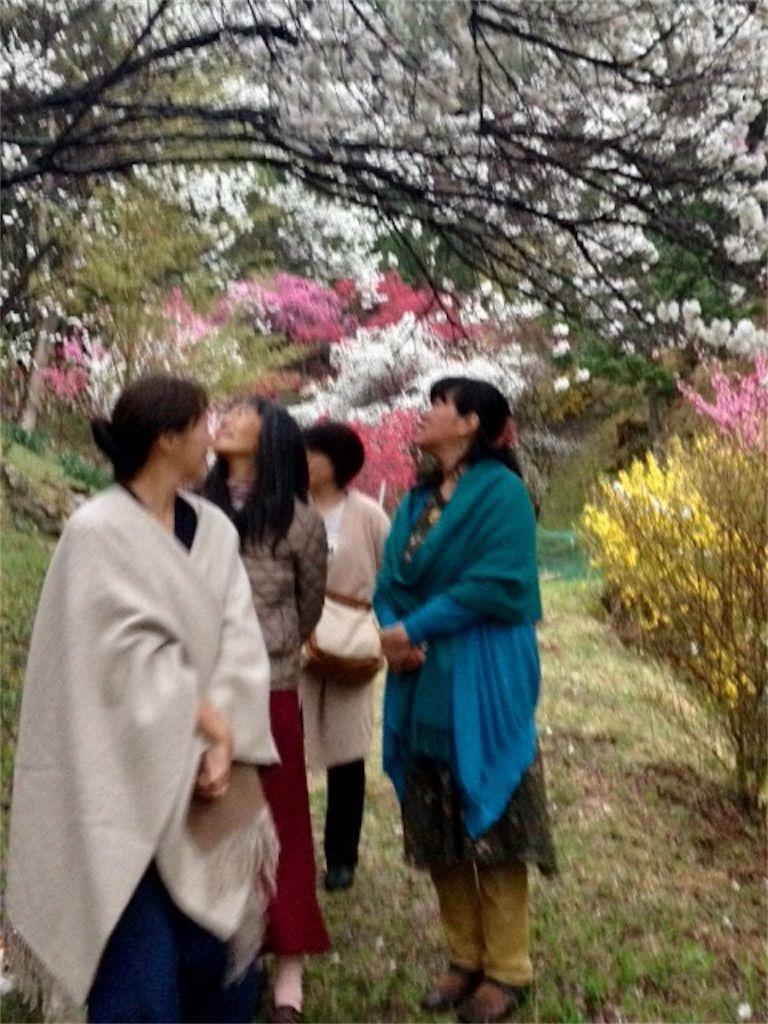 f:id:hoshi-no-shizuku-rokko:20190626192805j:image