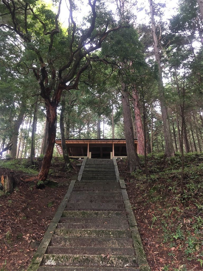 f:id:hoshi-no-shizuku-rokko:20190907224437j:image