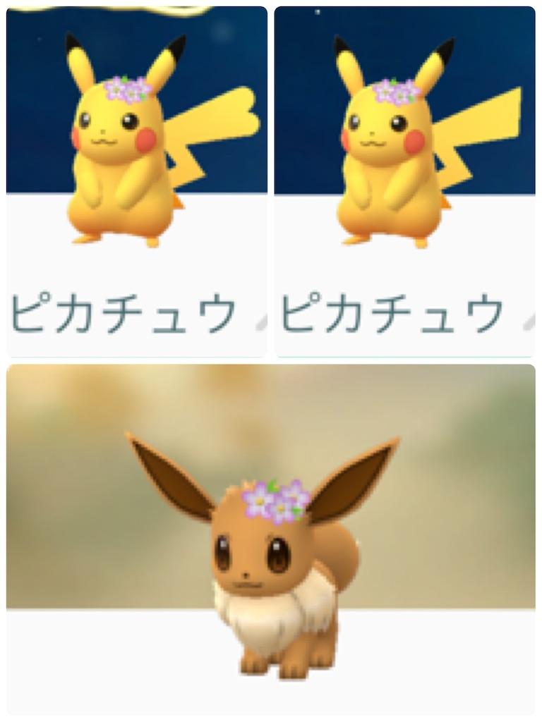 f:id:hoshi_dachi3:20190228183136j:image
