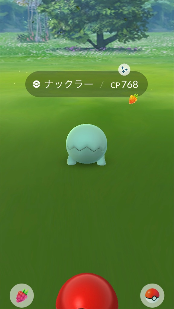 f:id:hoshi_dachi3:20191026142150j:image