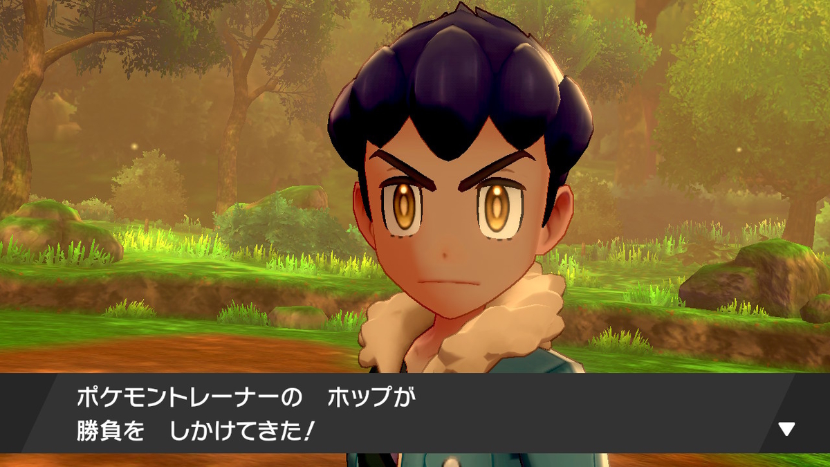 f:id:hoshi_dachi3:20191228211222j:plain