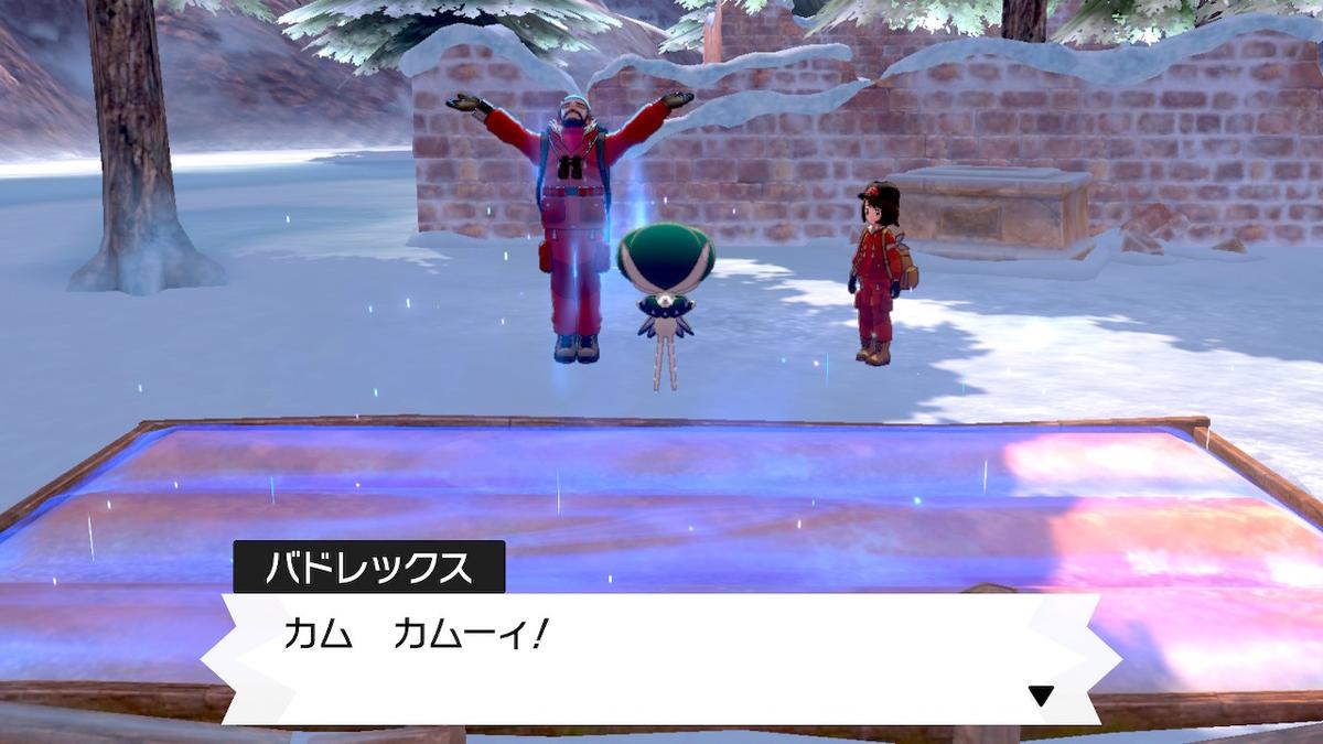 f:id:hoshi_dachi3:20201031155411j:plain