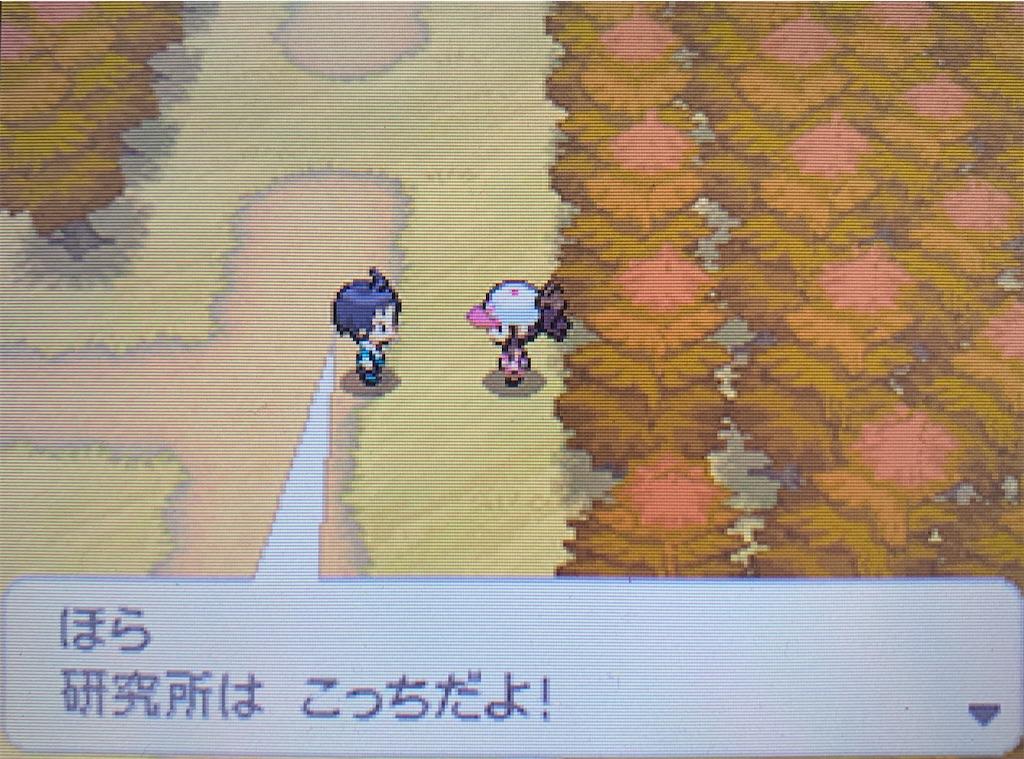 f:id:hoshi_dachi3:20201123173527j:image