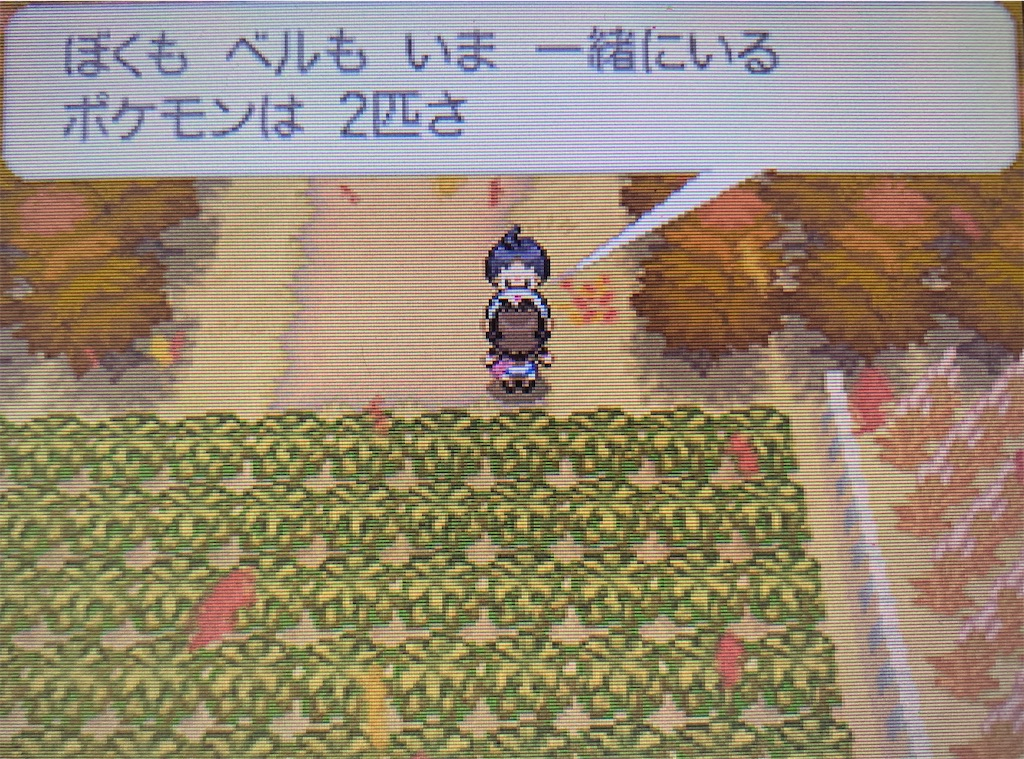f:id:hoshi_dachi3:20201123182024j:image