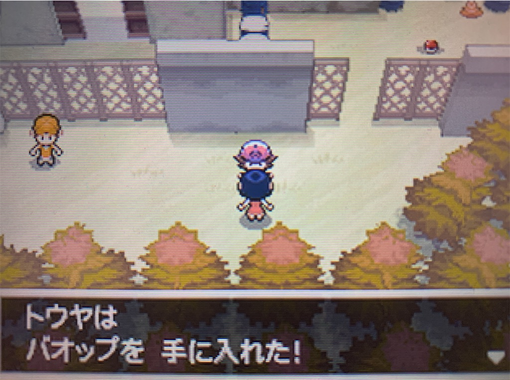 f:id:hoshi_dachi3:20201129114516j:image