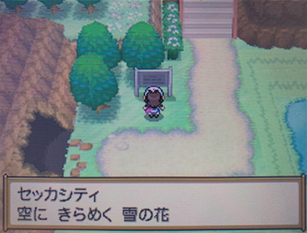 f:id:hoshi_dachi3:20210110165215j:image