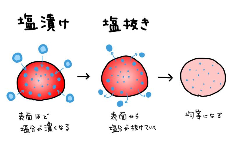 f:id:hoshi_sano:20180124222043j:plain