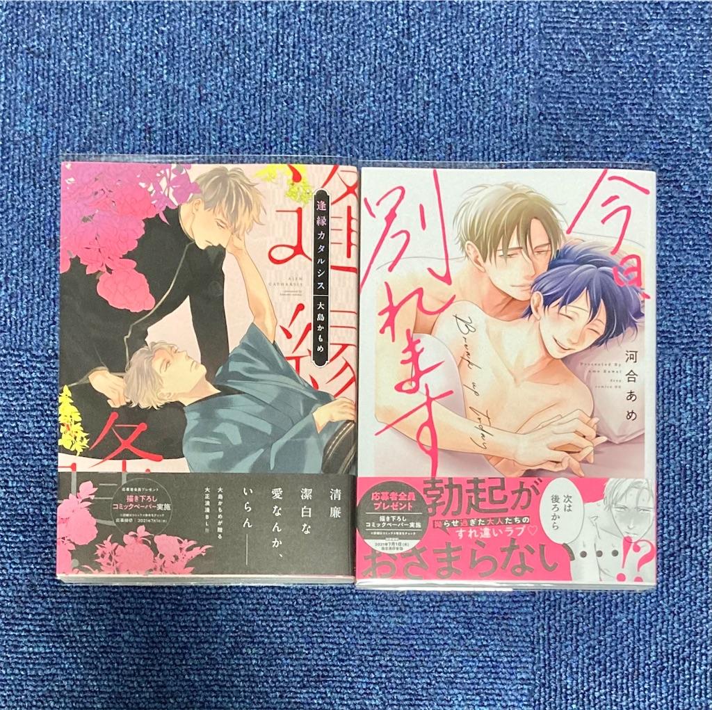 f:id:hoshida-ss:20210501011720j:plain
