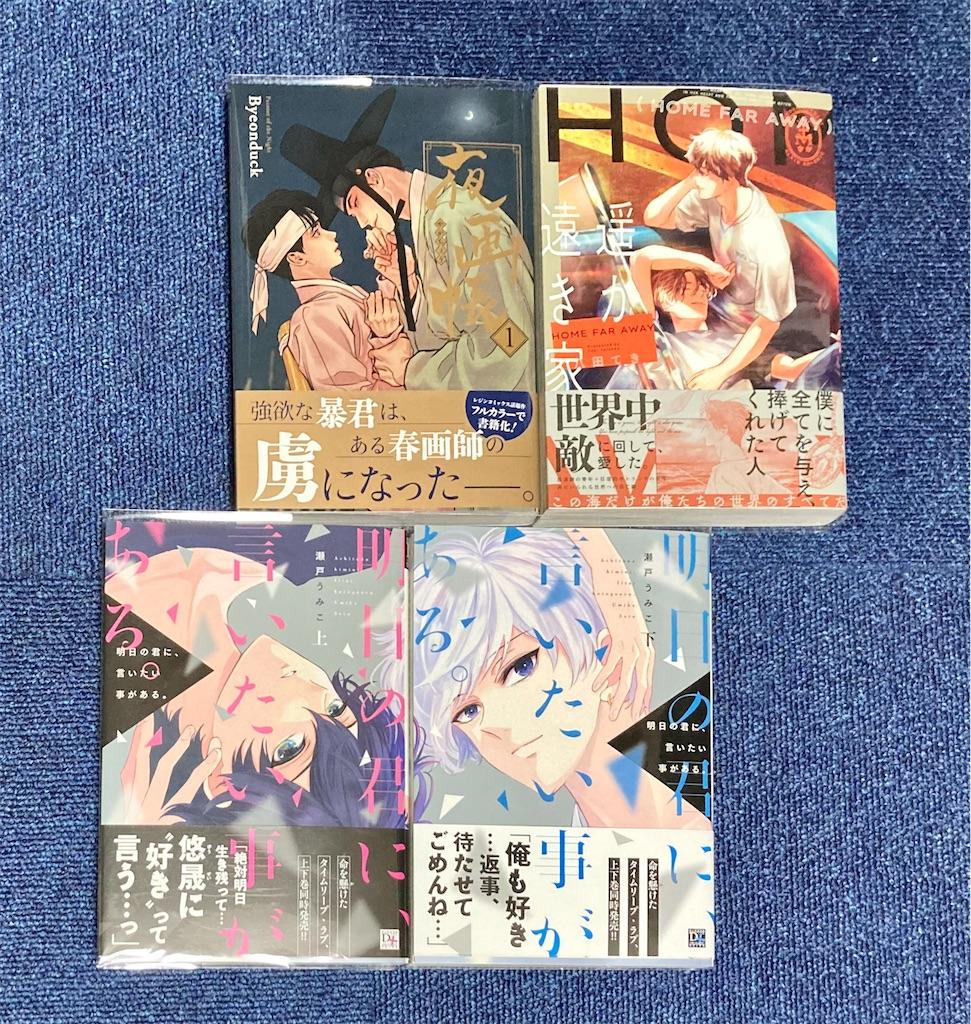 f:id:hoshida-ss:20210501011742j:plain