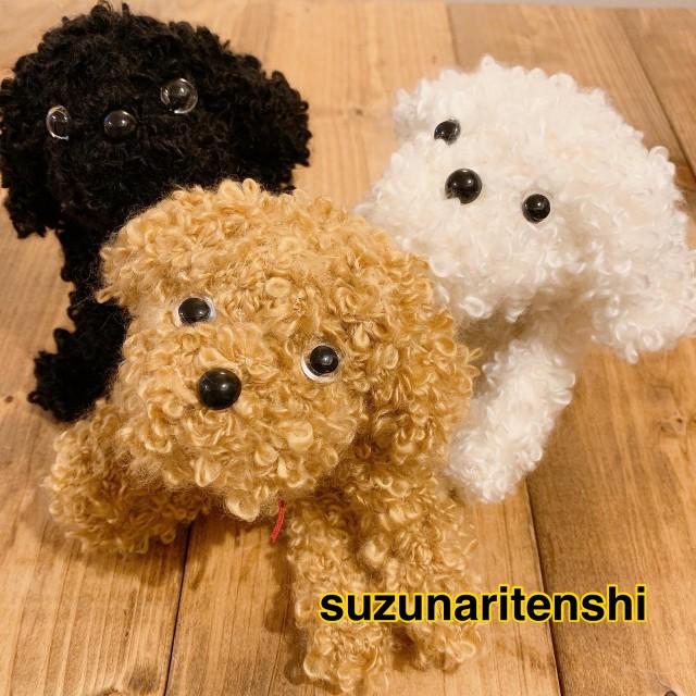 f:id:hoshifuruyoru:20200221145154j:image