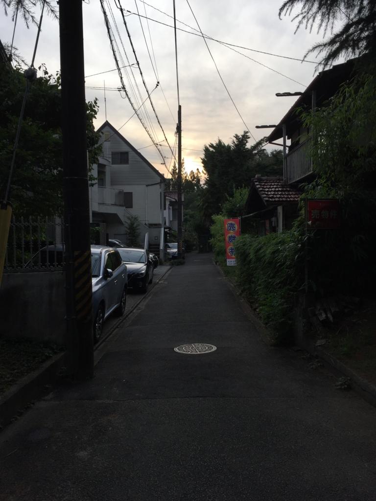 f:id:hoshihanaroma:20160707215617j:plain