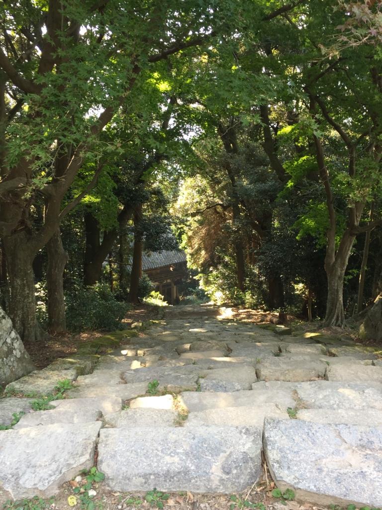 f:id:hoshihanaroma:20161108151929j:plain