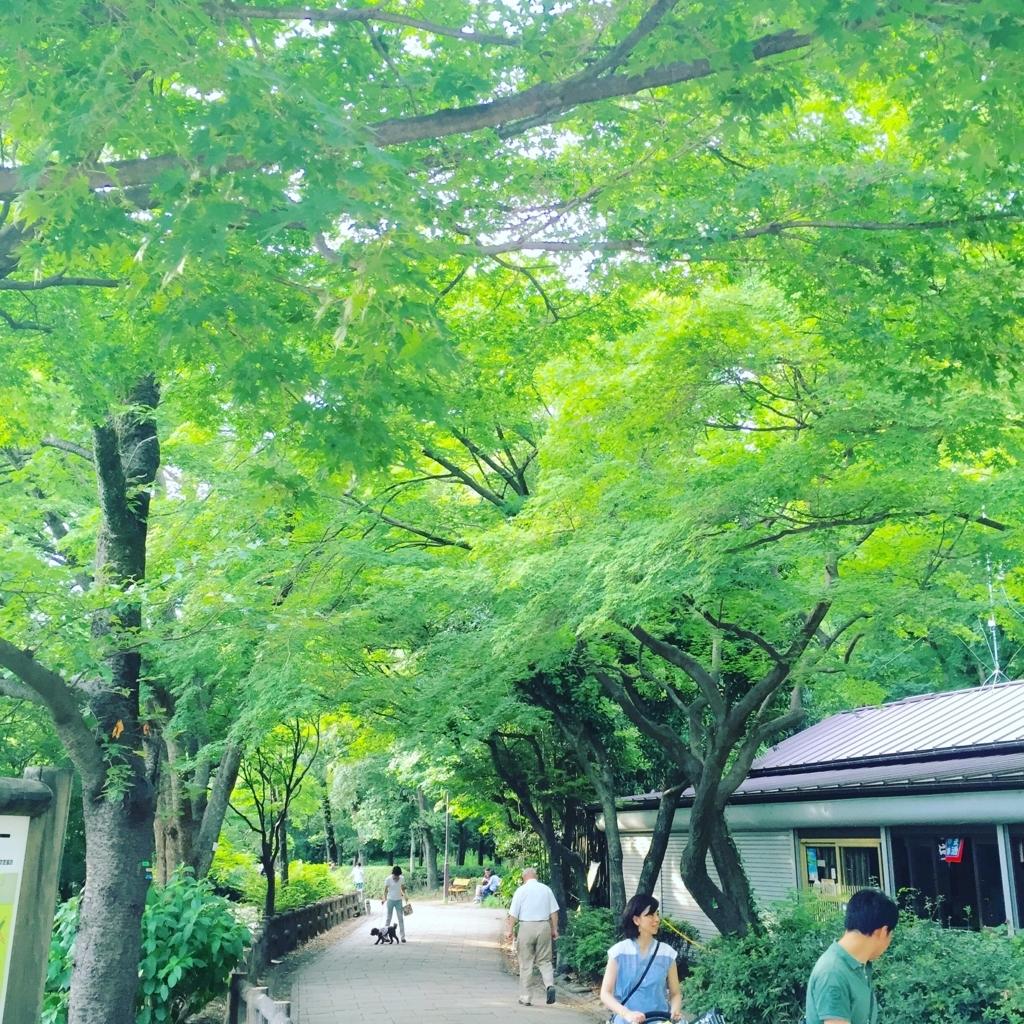 f:id:hoshihanaroma:20170726212329j:plain