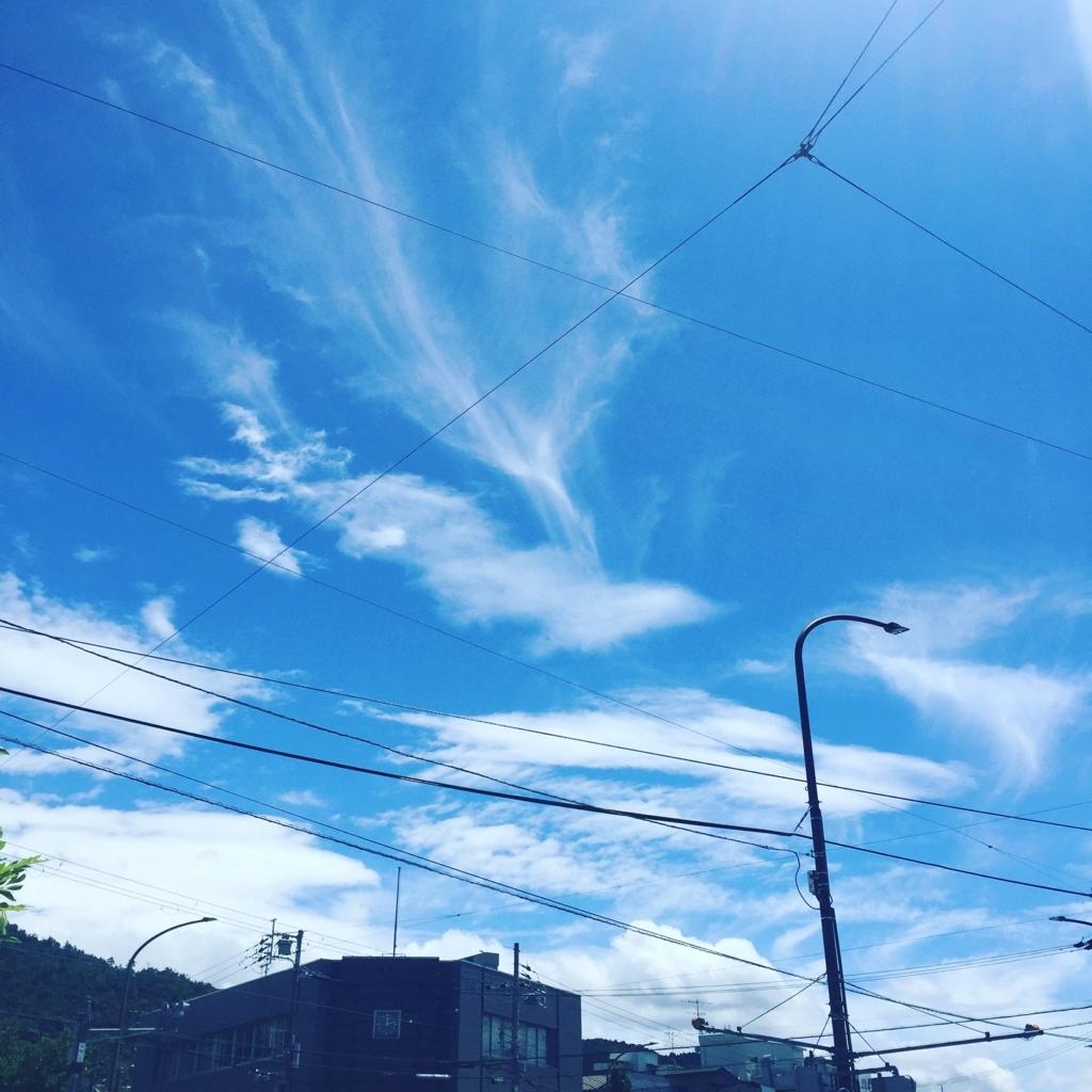 f:id:hoshihanaroma:20170822221003j:plain