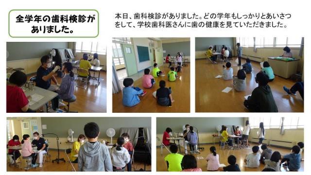f:id:hoshii-shika:20201009082950j:plain