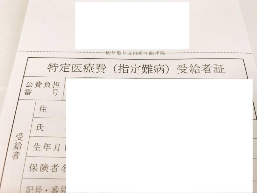 f:id:hoshinogaku:20171228153200j:plain
