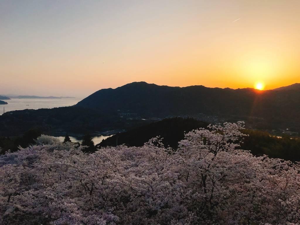 f:id:hoshinogaku:20180331133032j:plain