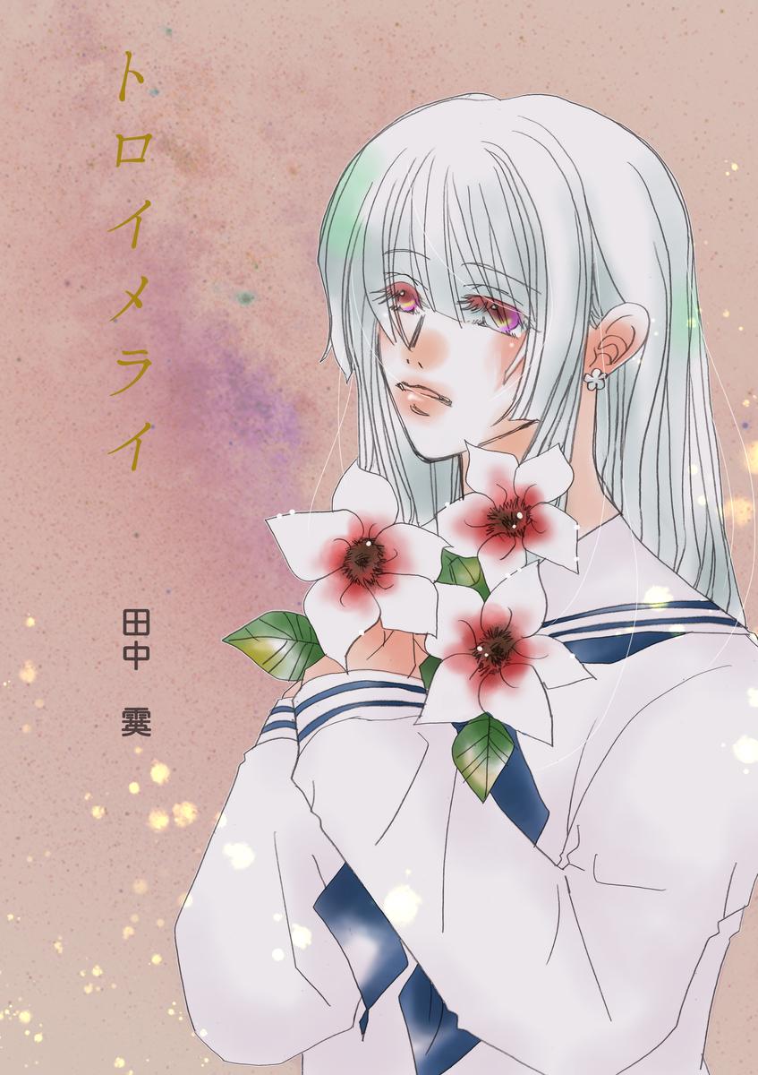 f:id:hoshinosunabunko:20200513161438j:plain
