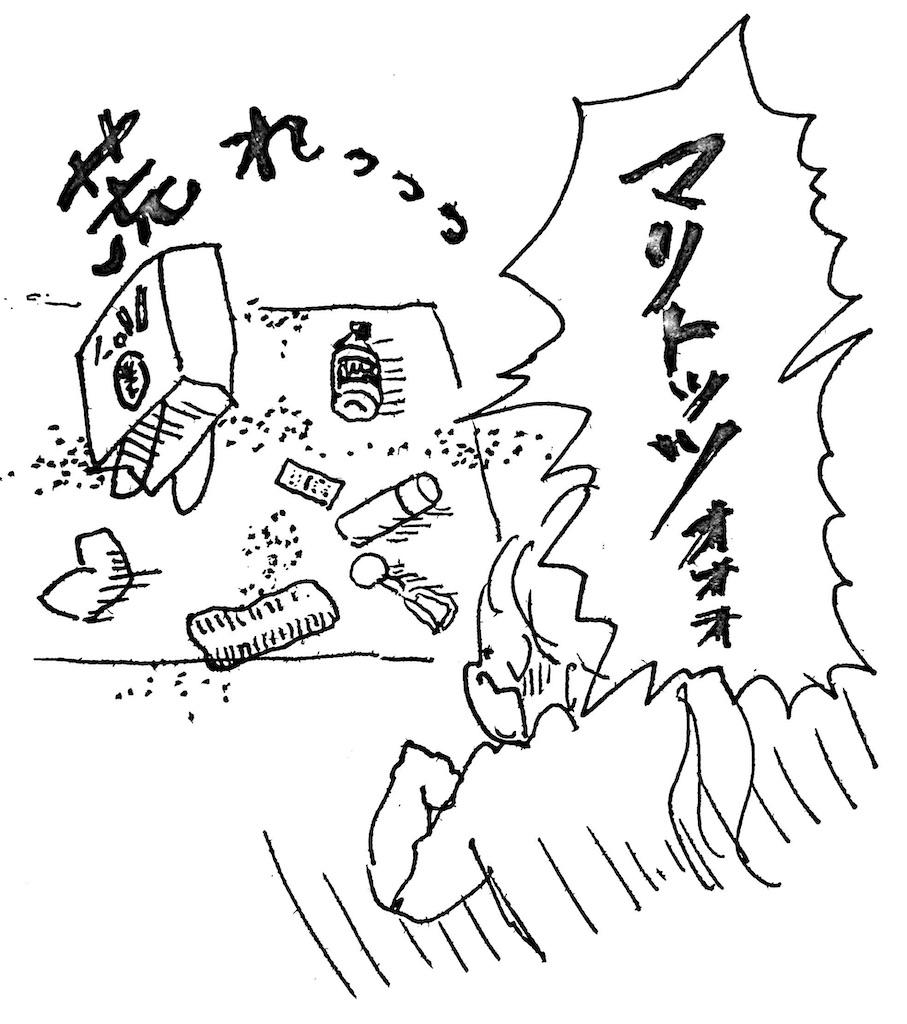 f:id:hoshisarami:20210514214114j:image