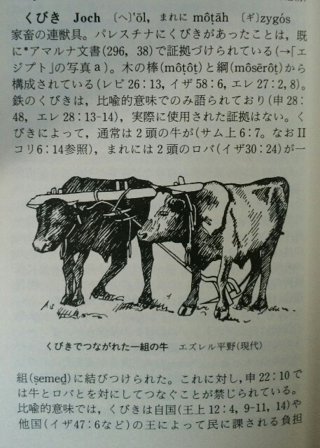 f:id:hoshishusaku:20170605071710j:image