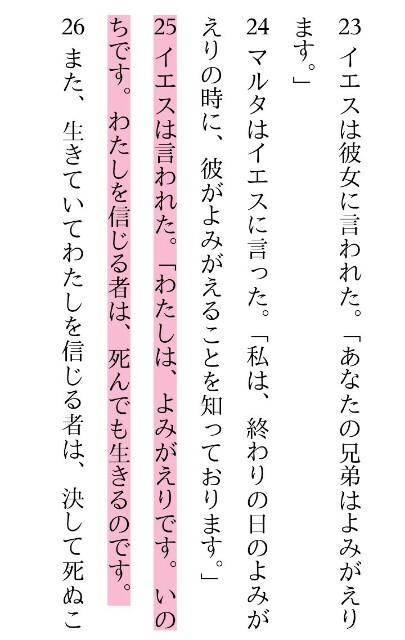 f:id:hoshishusaku:20190224050651j:image