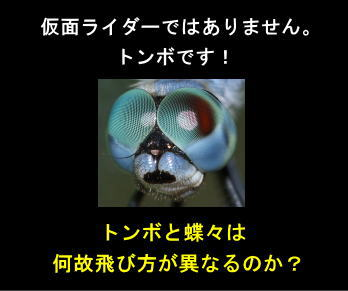 f:id:hoshishusaku:20190727080714j:plain