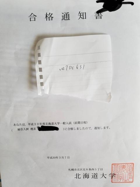 f:id:hoshizuka:20210302044515j:plain