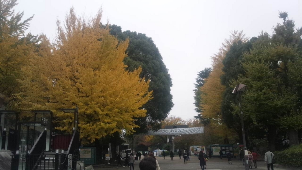 f:id:hoshizukuyo:20171115013441j:plain