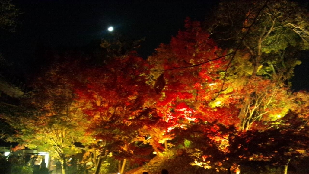 f:id:hoshizukuyo:20171127030121j:plain