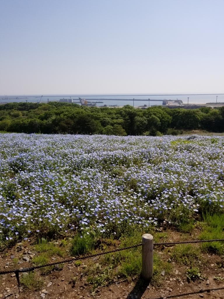f:id:hoshizukuyo:20180428220012j:plain