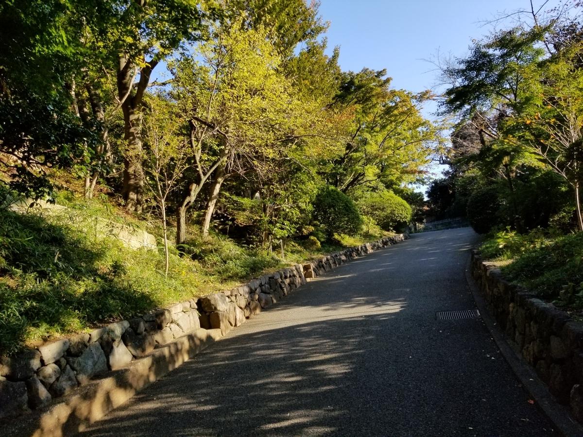 f:id:hoshizukuyo:20201102173242j:plain