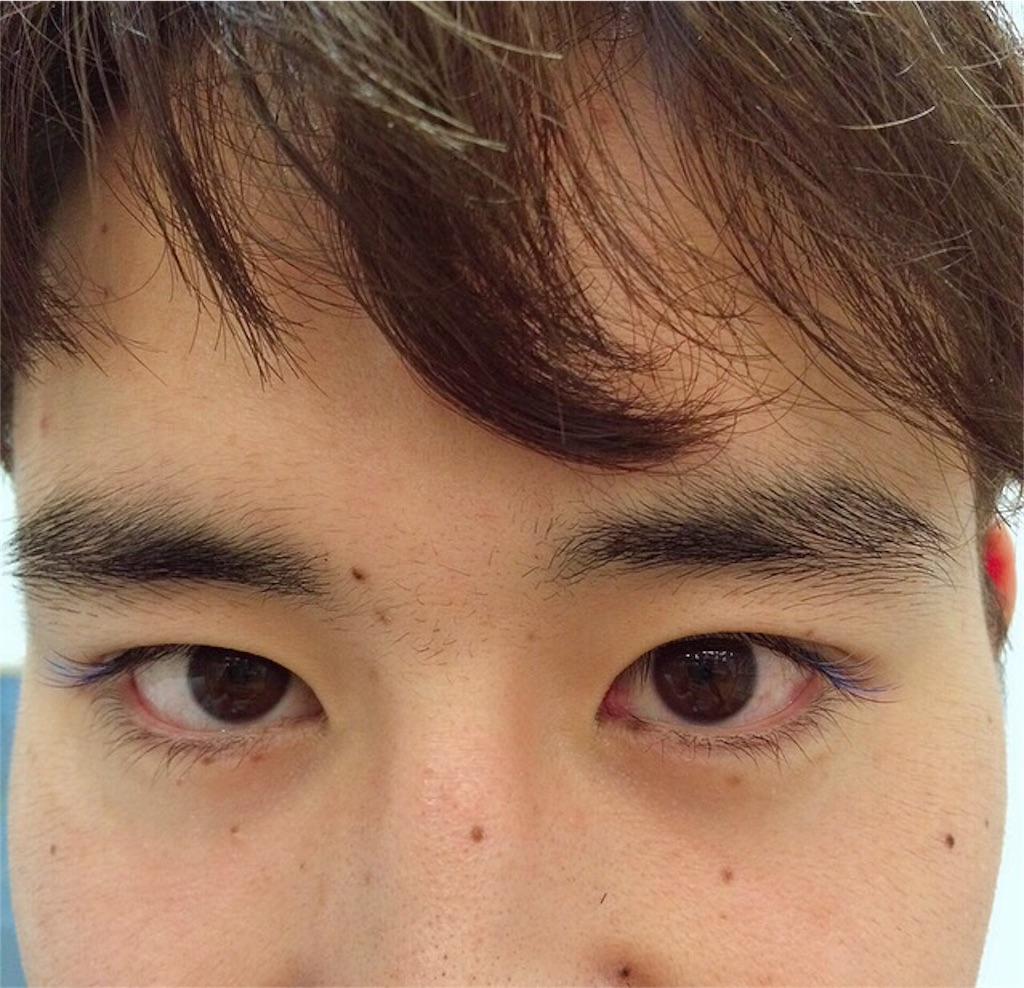 f:id:hosikuzu0525:20160812004321j:image