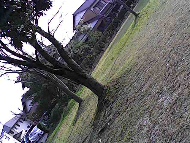 f:id:hoso-11-bishamonten:20180401003027j:plain