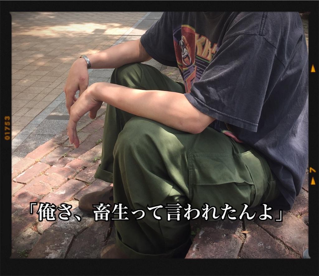 f:id:hosomizu:20170531100018j:image