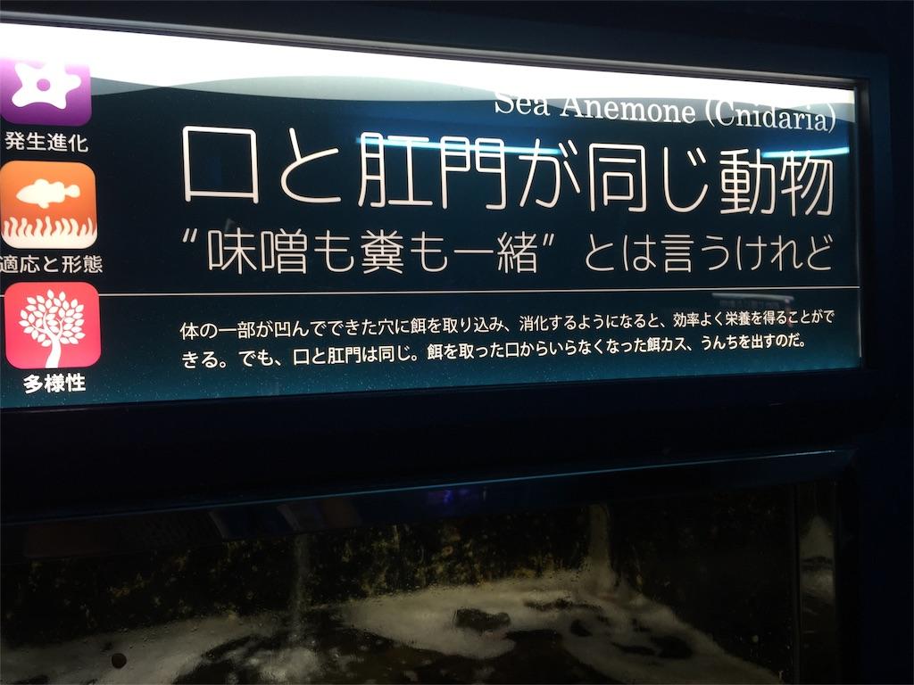 f:id:hosomizu:20170719003421j:image