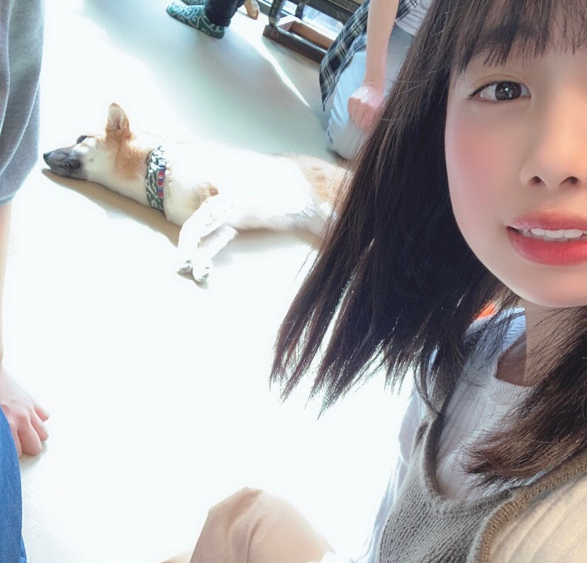 f:id:hot:20190426015753j:plain