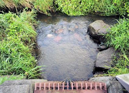 0913_取水口.jpg