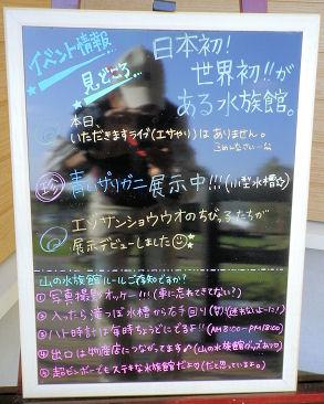 1023_山の水族館.jpg
