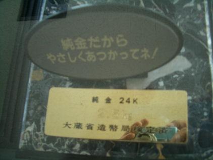 CIMG8896.JPG