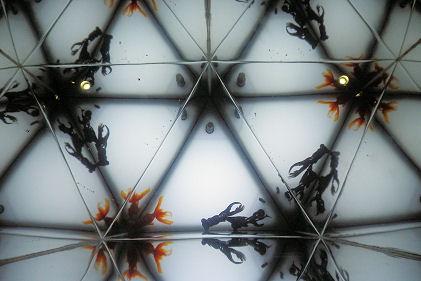 0707_金魚の万華鏡.jpg