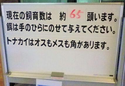 0824_トナカイ数.jpg