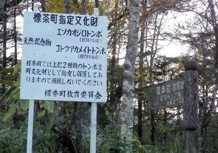 1017_標茶町指定文化財.jpg