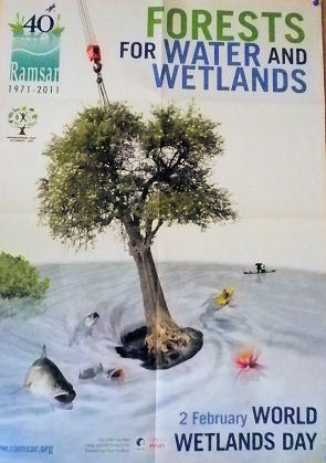 0911_森は水&湿地の為.jpg