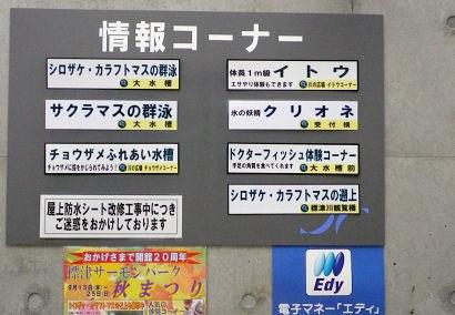 0911_情報コーナー.jpg